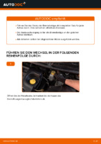 PDF Wechsel Anleitung: Bremsklötze FIAT BRAVO II (198) hinten + vorne
