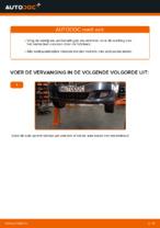 FIAT - reparatie handleidingen met illustraties