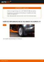Wiellagerset veranderen FIAT BRAVA: gratis pdf