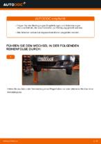 Wann Luftfiltereinsatz auswechseln: PDF Tutorial für FIAT BRAVO II (198)