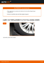 Auto mechanic's recommendations on replacing FIAT FIAT BRAVO II (198) 1.6 D Multijet Pollen Filter