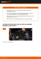 Wie hinten und vorne Federbeinstützlager auswechseln und einstellen: kostenloser PDF-Anleitung
