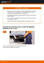 Bremsscheiben auswechseln AUDI A4: Werkstatthandbuch