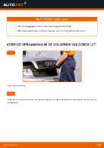 Werkplaatshandboek voor Audi A4 b6