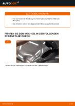 Tipps von Automechanikern zum Wechsel von RENAULT RENAULT MEGANE II Saloon (LM0/1_) 1.9 dCi Zündkerzen