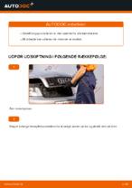 Hvordan tændrørene på AUDI A4 B6 udskiftes