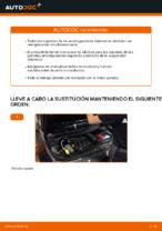 Suspensión y Brazos manual de cambio y reparación con ilustraciones