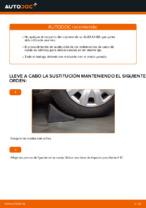 Cómo cambiar el rodamiento de cubo de la rueda delantera en AUDI A4 B6