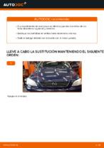 PDF manual sobre mantenimiento ASTRA