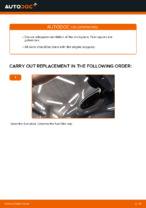 When to change Fuel Filter on RENAULT MEGANE II Saloon (LM0/1_): pdf manual