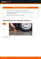STARK SKCS-0040244 för OPEL, VAUXHALL | PDF instruktioner för utbyte