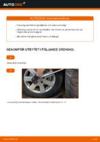 PDF guide för byta: Spiralfjädrar AUDI bak och fram