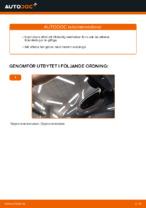 Bilmekanikers rekommendationer om att byta RENAULT RENAULT MEGANE II Saloon (LM0/1_) 1.9 dCi Fjäderbenslagring