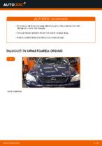 Recomandările mecanicului auto cu privire la înlocuirea OPEL Opel Astra g f48 1.6 (F08, F48) Suport motor