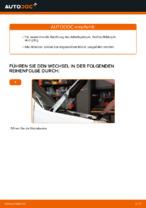 Tipps von Automechanikern zum Wechsel von FIAT Fiat Doblo Cargo 1.3 D Multijet Bremsscheiben