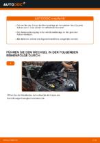 LPR 23699 für MEGANE II Stufenheck (LM0/1_) | PDF Handbuch zum Wechsel