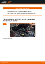 Zündkerzensatz auswechseln: Online-Handbuch für RENAULT MEGANE