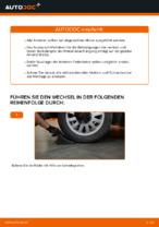 Ratschläge des Automechanikers zum Austausch von AUDI Audi A3 8l1 1.8 T Bremssattel