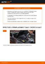 Comment changer et régler Disque RENAULT MEGANE : tutoriel pdf