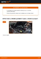 Manuel d'utilisation RENAULT MEGANE pdf