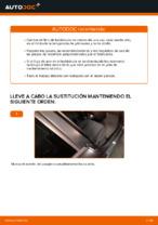 Filtros manual de cambio y reparación con ilustraciones
