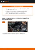 Reemplazo Rodamiento de rueda instrucción pdf para RENAULT MEGANE
