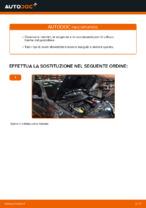 Quando cambiare Filtro aria motore RENAULT MEGANE II Saloon (LM0/1_): manuale pdf
