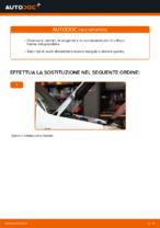 Manuale di risoluzione dei problemi FIAT DOBLO