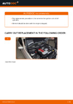 Engine change & repair manual with illustrations