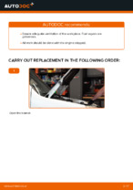 Free online instructions on how to renew Fuel Filter on FIAT DOBLO Cargo (223)