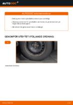 STARK SKCS-0040111 för RENAULT | PDF instruktioner för utbyte