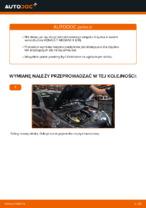Instrukcja obsługi RENAULT online