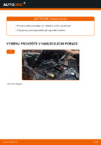 Výměna Zapalovaci svicka: pdf návody pro RENAULT MEGANE