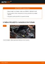 Doporučení od automechaniků k výměně RENAULT RENAULT MEGANE II Saloon (LM0/1_) 1.9 dCi Brzdovy kotouc