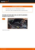 Zündkerzen wechseln RENAULT MEGANE: Werkstatthandbuch