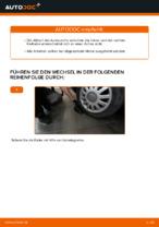AUDI Radlagersatz hinten rechts links wechseln - Online-Handbuch PDF