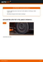 Laga Momentstag: pdf instruktioner för RENAULT CLIO