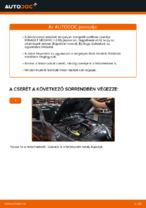 Autószerelői ajánlások - RENAULT RENAULT MEGANE II Saloon (LM0/1_) 1.9 dCi Levegőszűrő csere