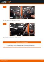 Automehāniķu ieteikumi FIAT Fiat Doblo Cargo 1.3 D Multijet Bremžu Kluči nomaiņai