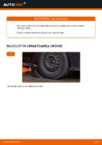 Manual de depanare RENAULT SYMBOL / THALIA