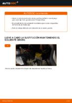 Cambiar Pastillas De Freno FIAT DOBLO: manual de taller