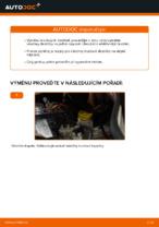 Dílenská příručka pro FIAT DOBLO MPV (152, 263)