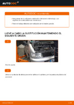Manual de instrucciones MERCEDES-BENZ gratuito