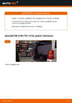 Hur byter man och justera Gasdämpare baklucka : gratis pdf guide