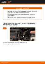 Wie Bremsklötze MERCEDES-BENZ VITO austauschen und anpassen: PDF-Anweisung