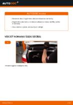 Kā nomainīt Audi A6 C6_4F bagāžnieka vāka amortizatorus
