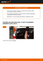 Dämpfer Heckklappe elektrisch austauschen: Online-Anleitung für AUDI A6