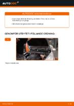 Hur byter man och justera Bränslefilter bensin: gratis pdf guide