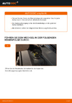 Wie Sie die hinteren Bremsbeläge am Audi A6 C6_4F ersetzen