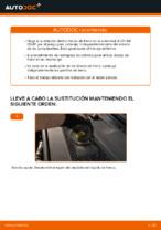 Manual online sobre el cambio de Kit de frenos de disco por su cuenta en AUDI A6 (4F2, C6)